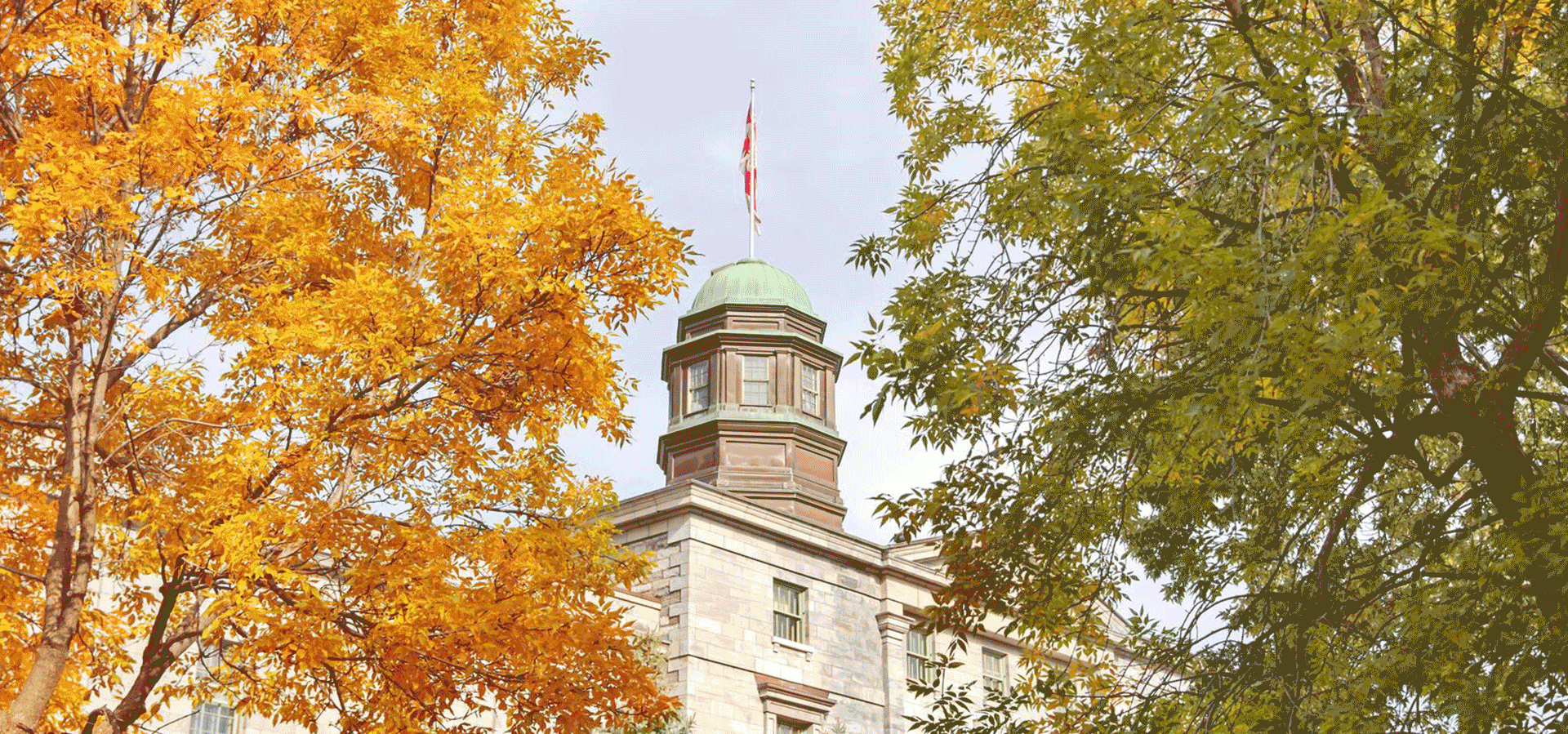 McGill arts building cupola and fall foliage