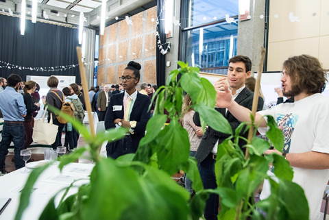 Students at event with plant in foreground