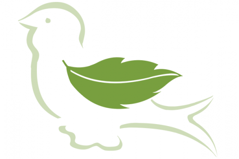 SPF Logo; Green Bird with a leaf for wing