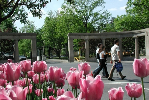 McGill Roddrick Gates with tulips in the foreground