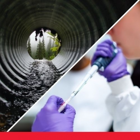 image of sewer with water flowing and triangle of two lab hands testing a liquid