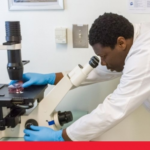 a student in a lab looking through a microscope