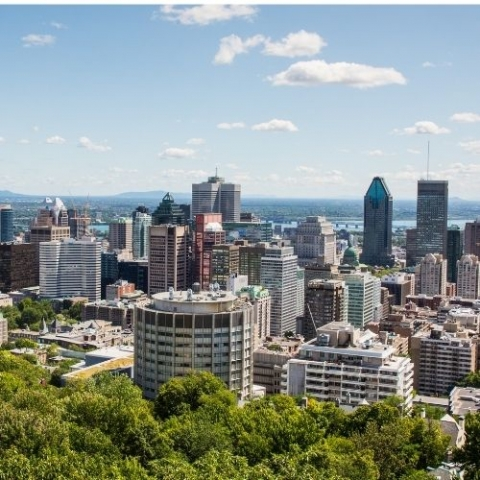 view of Montreal city from mountain top