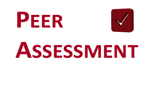 Peer Assessment logo