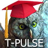 T-PULSE owl