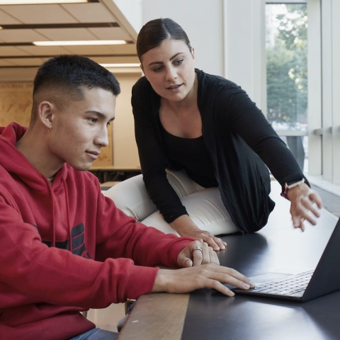 Student and an advisor looking at a computer
