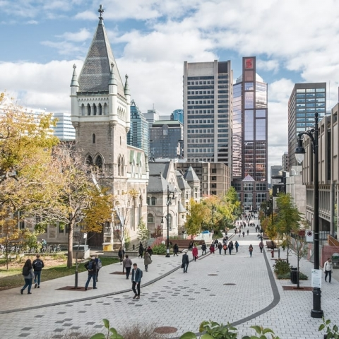 Photo of McGill downtown campus on McTavish Street