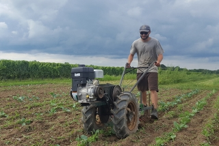 Student pushes agricultural equipment in a field.